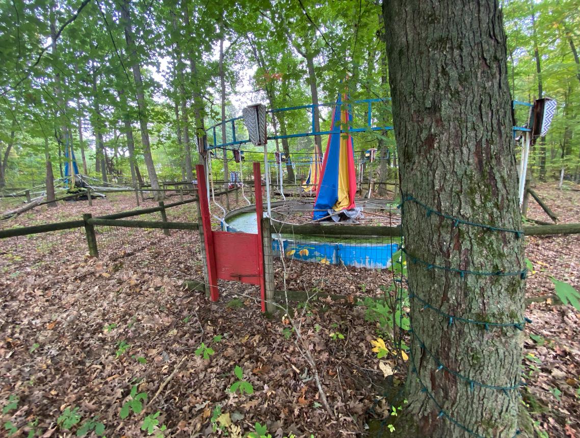 Deer Forest Fun Park (October 6, 2021)