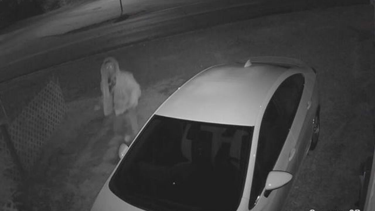 Car vandalism has Indy family concerned