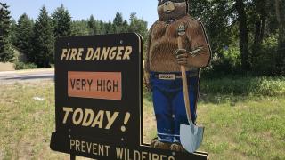 Flathead Forest Danger
