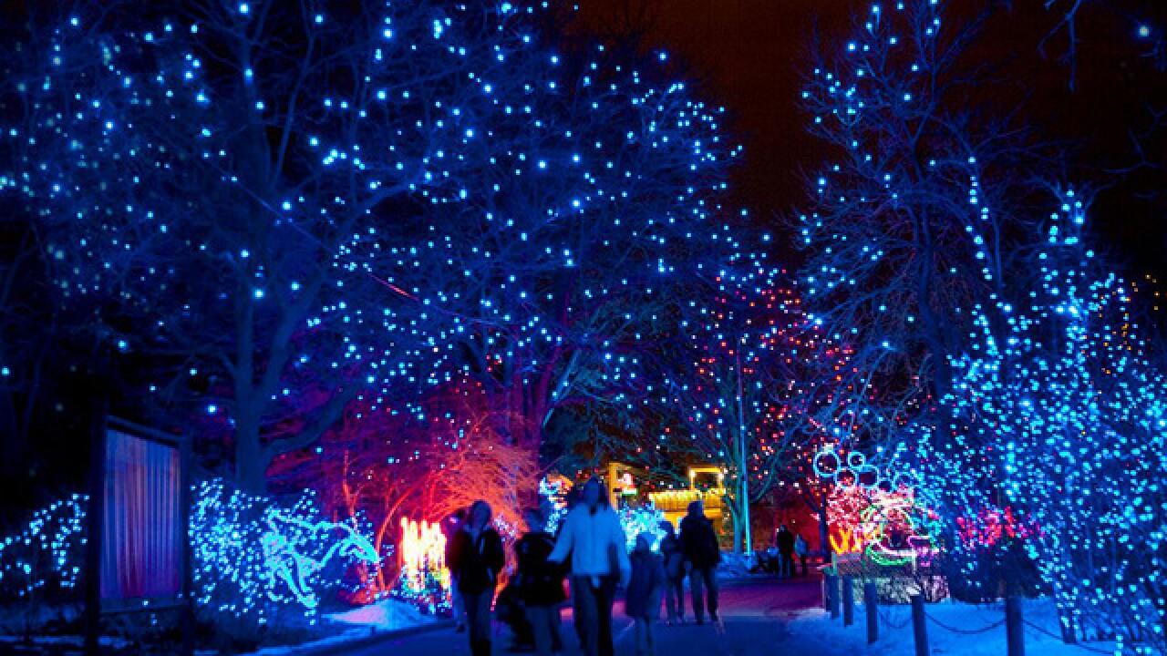 ?url=https%3A%2F%2Fmediaassets.thedenverchannel.com%2Fphoto%2F2017%2F11%2F18%2FDenver%20Zoo Zoo%20Lights 2017 11 1511049358789 72009609 ver1.0 640 480 - Blossoms Of Light Denver Botanic Gardens December 10