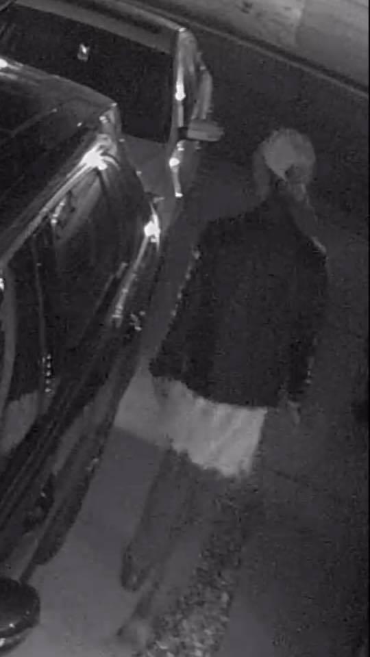 Photos: York-Poquoson police looking for larcenysuspect