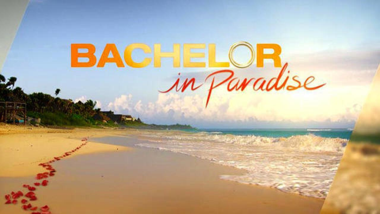 Production of 'Bachelor in Paradise' suspended after contestants get busy in pool