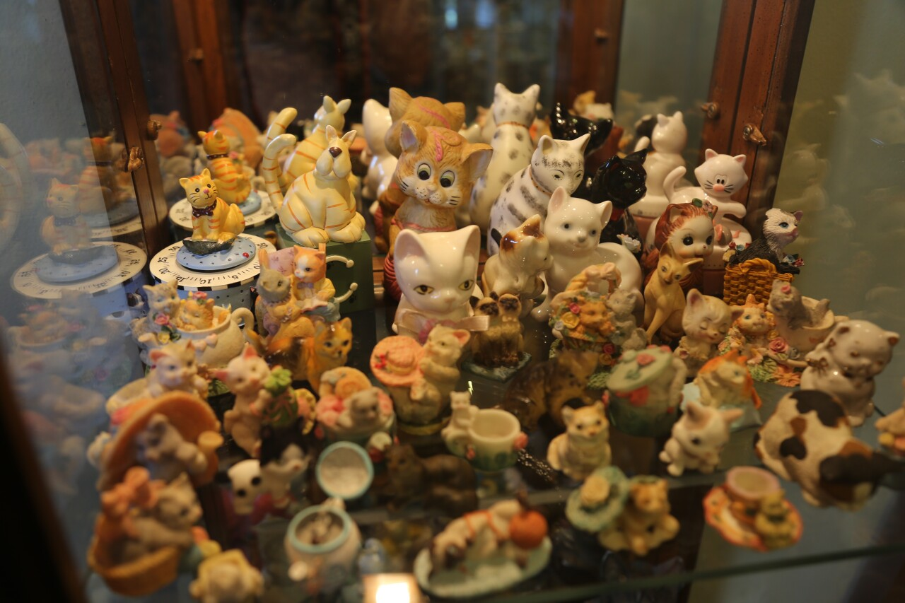 There are thousands of cat figurines, photos, pictures, and other memorabilia in this Menomonee Falls home turned museum.