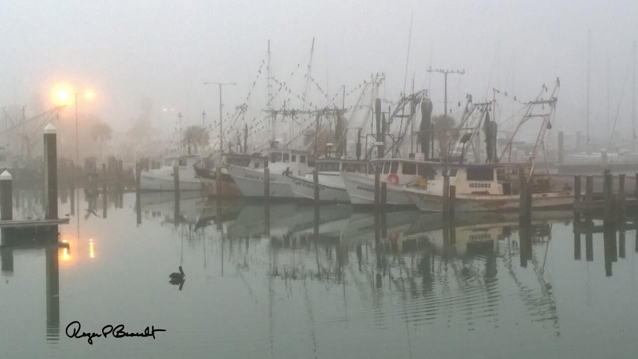 fog2618tworb.jpg