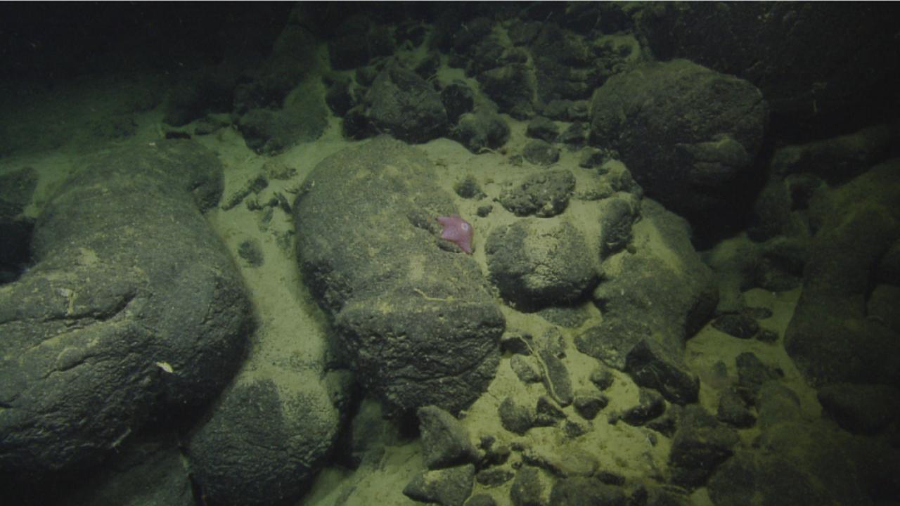 Ocean Depth Study.png