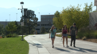 college enrollment