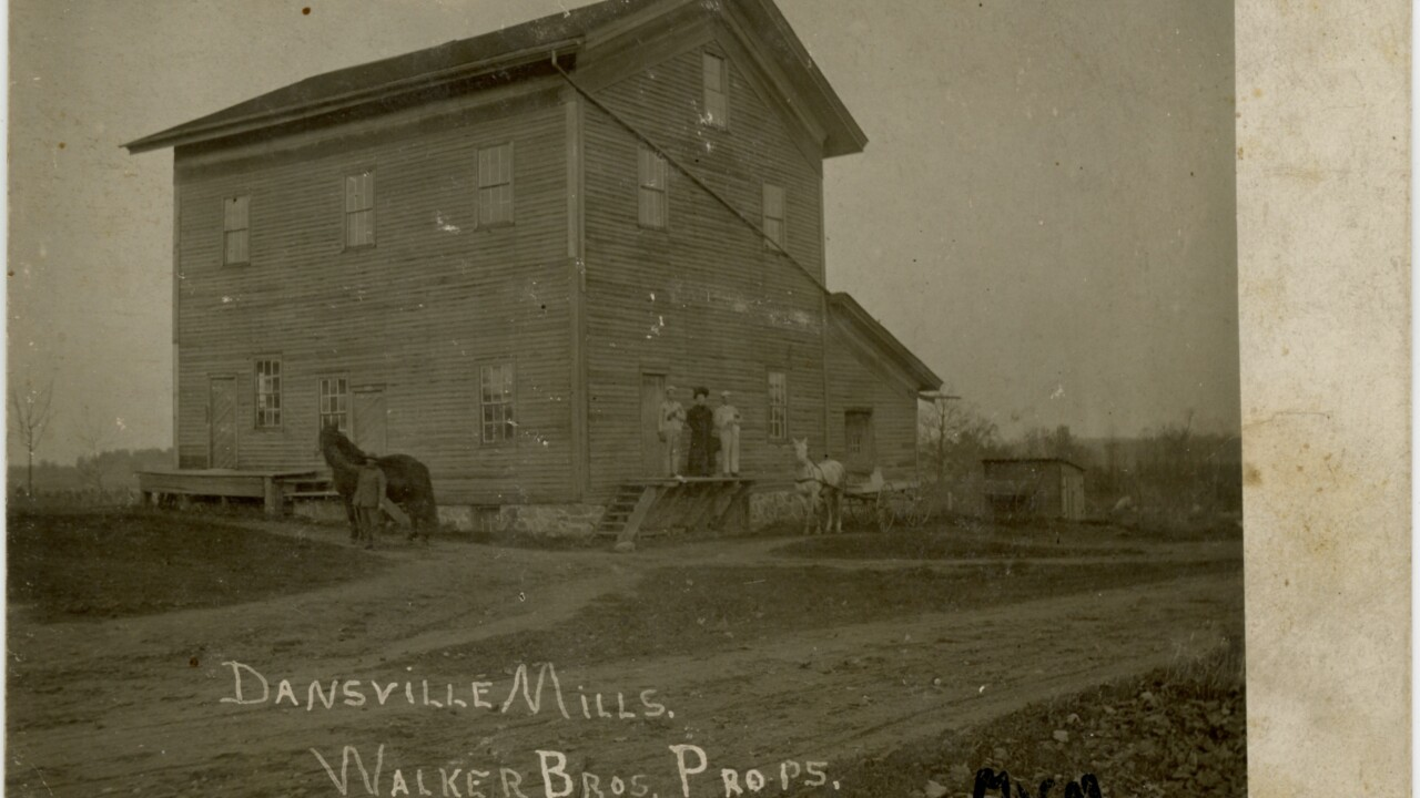 Dansville Mills Postcard