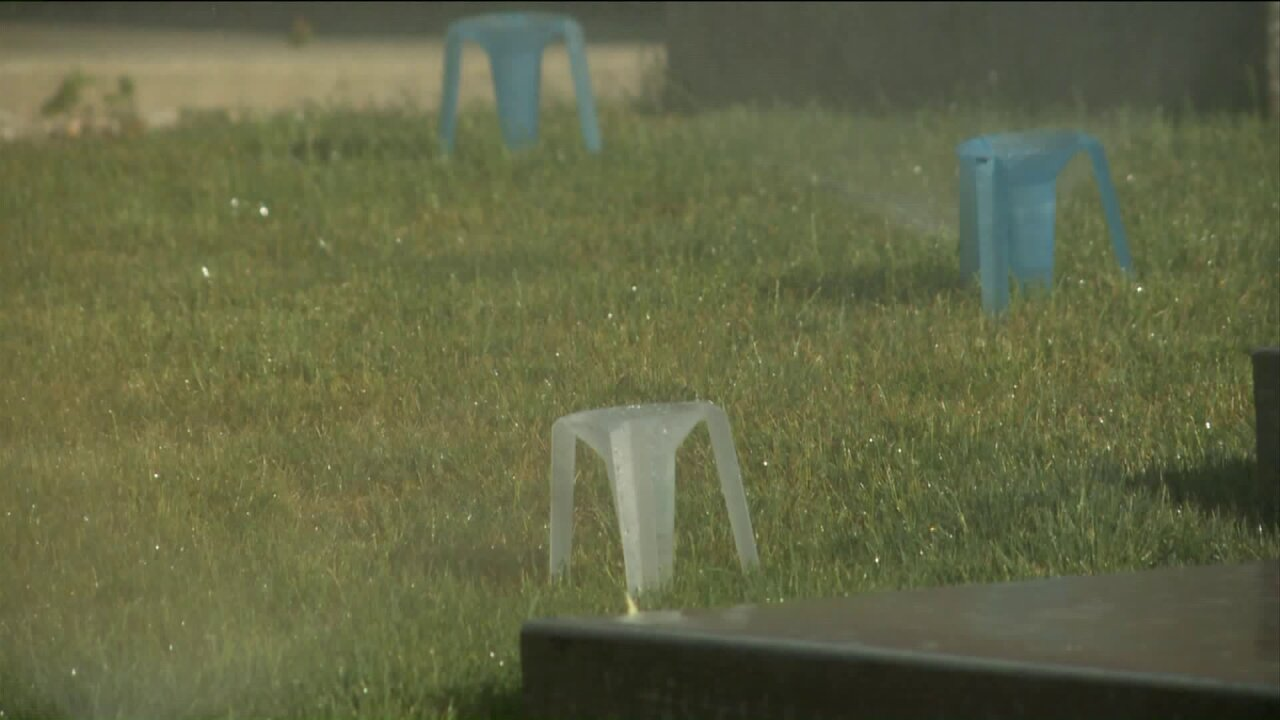 Free program helps Utahns save water and keep lawns healthy