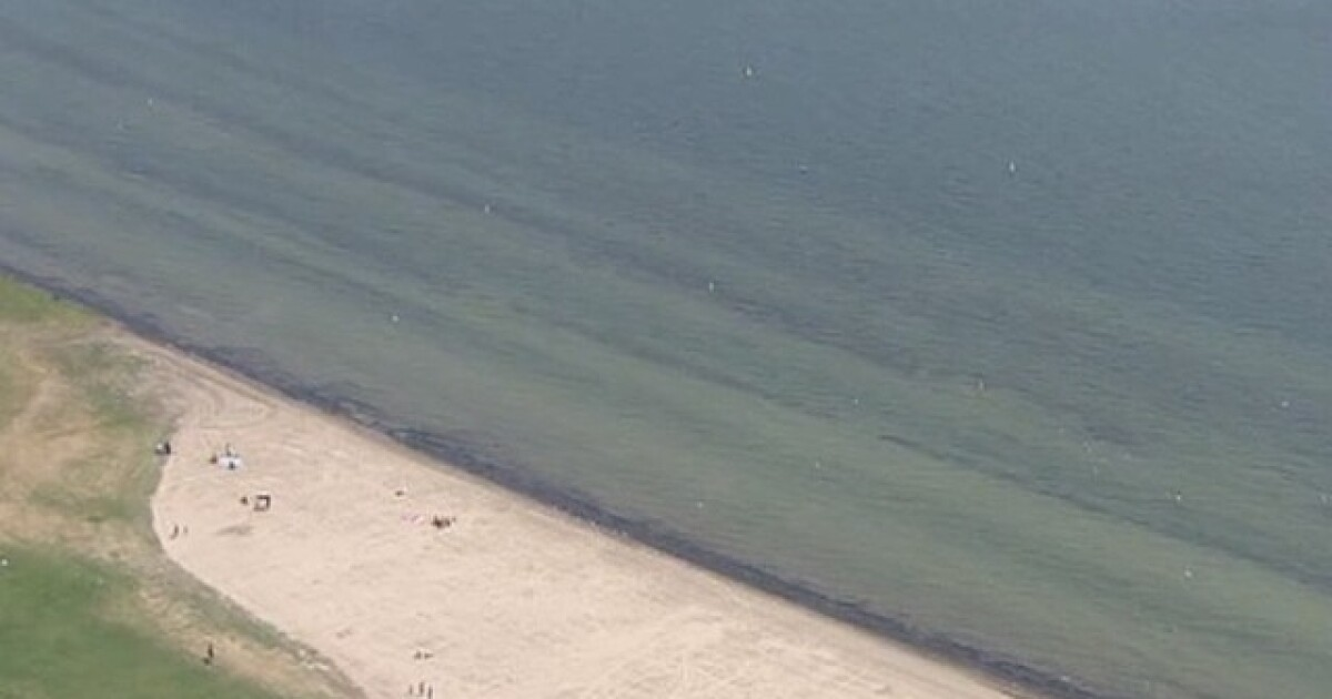 7 beaches closed due to high bacteria levels