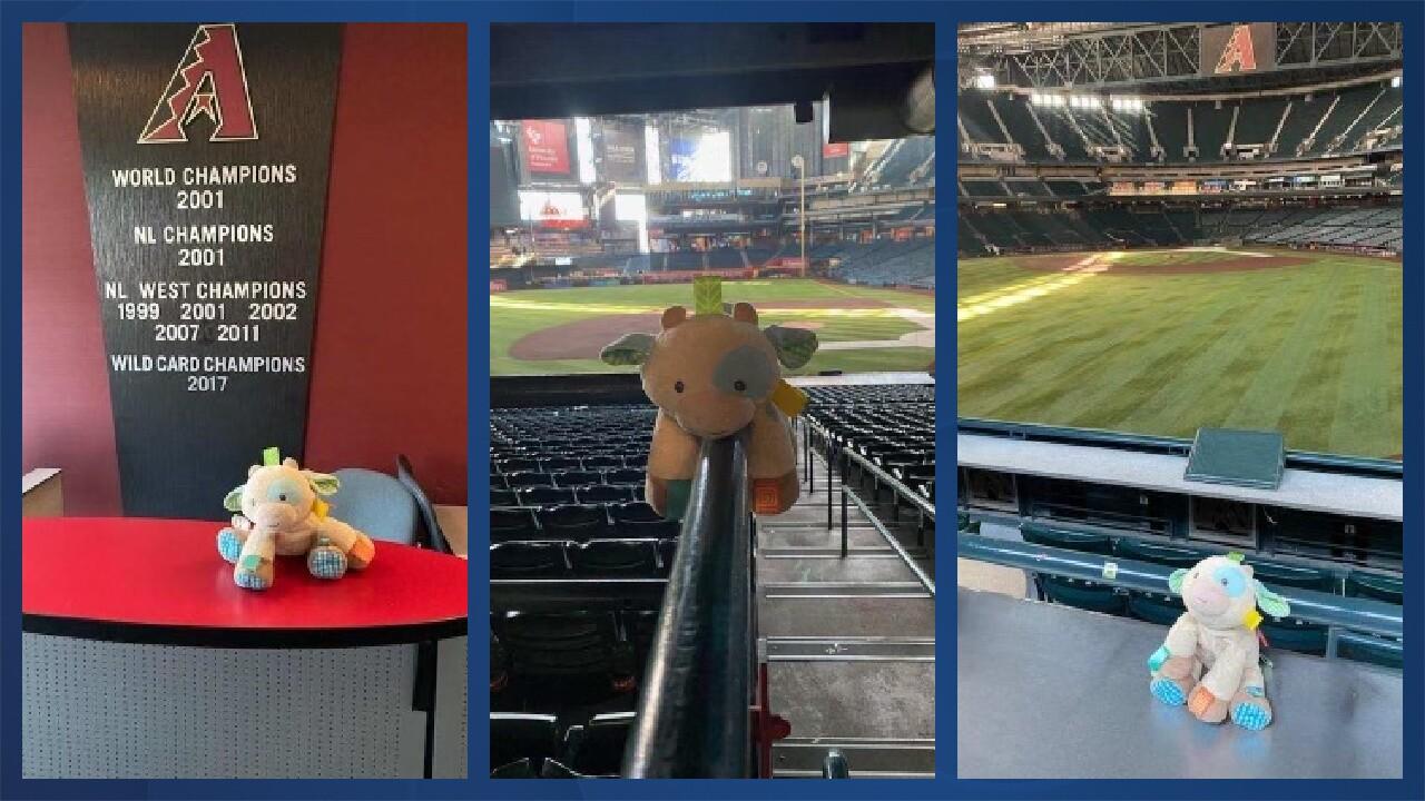 Cowie the lost stuffed animal.jpg