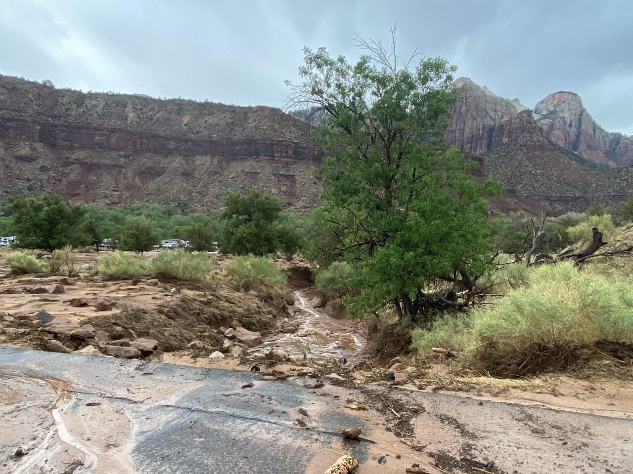 Zion National Park_debris on road near VC_6_29_2021.jpg