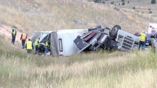 Truck hauling cattle overturns; driver escapes injury, all but one cow survived