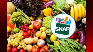 DCFS: Early issuance of SNAP benefits for February is complete