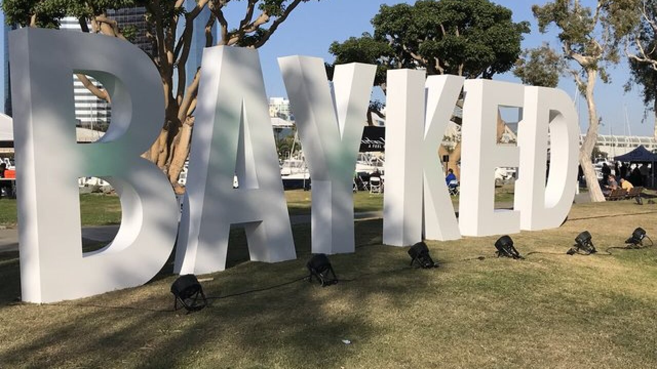 'Bayked SD' festival to celebrate legal cannabis on April 20 without marijuana