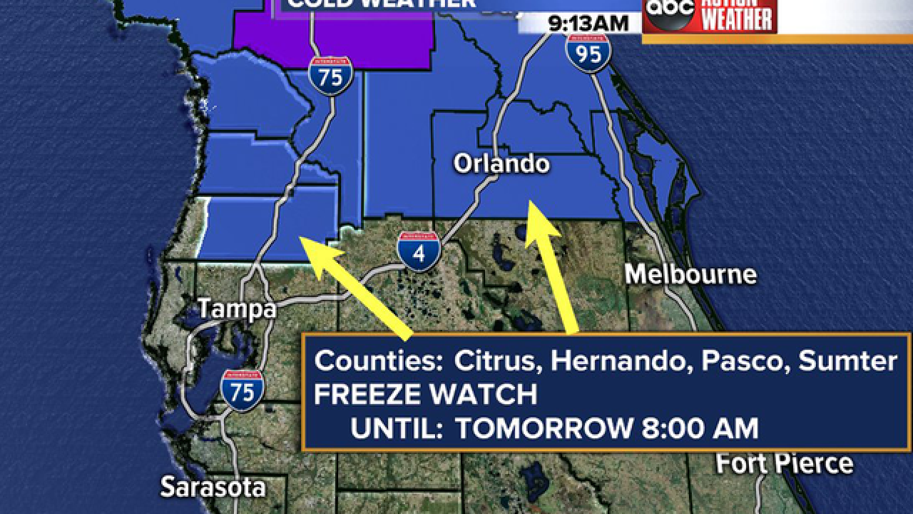 Freeze Warnings issued for Tampa Bay