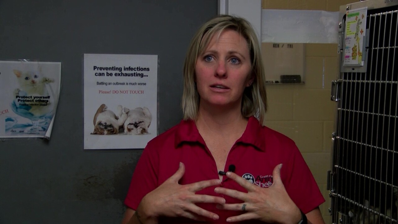 Great Falls Animal Shelter - Volunteer Coordinator Karen Hockenberry