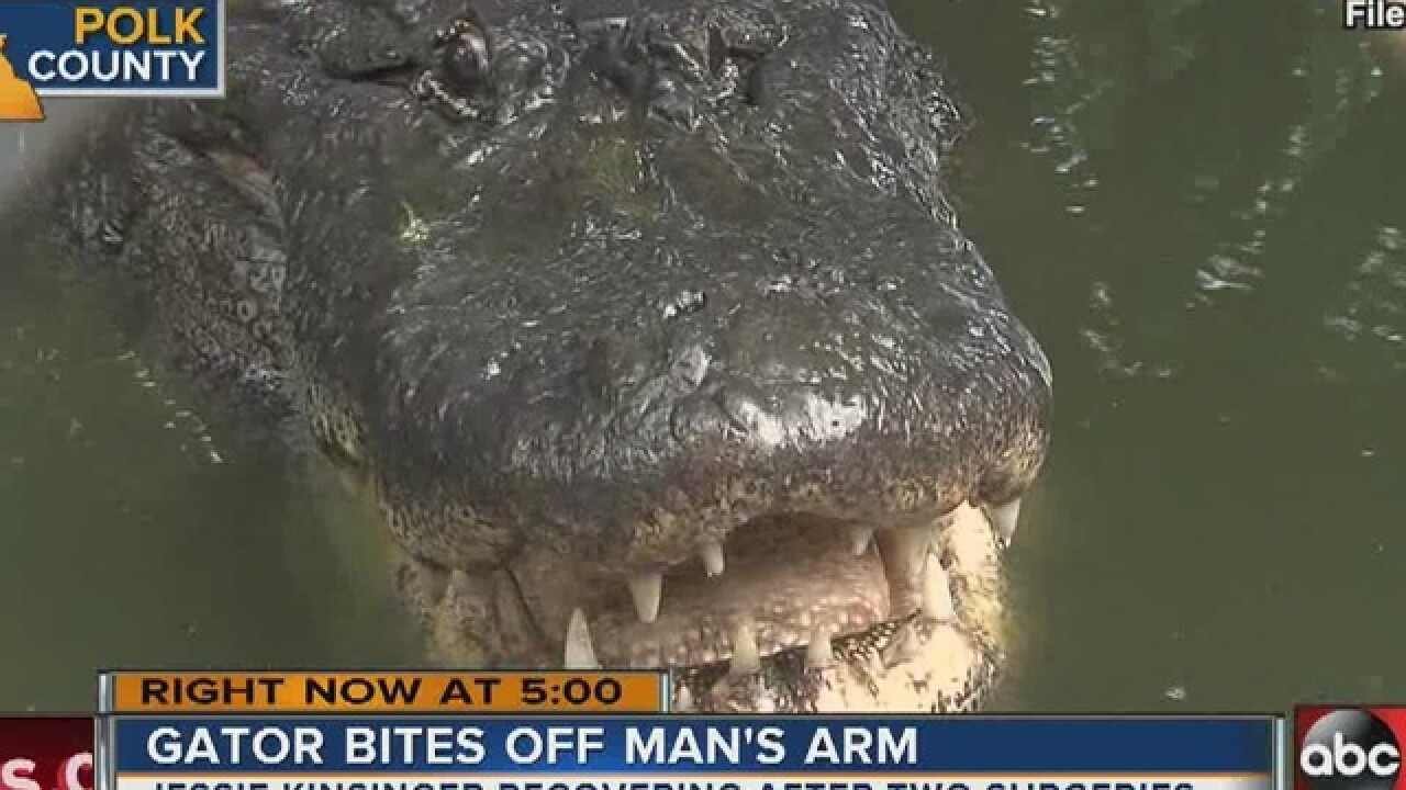Man loses arm to gator while running from cops