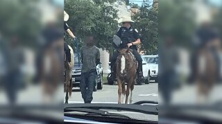 Mounted officers in controversial arrest of black man in Texas will not face criminal investigation