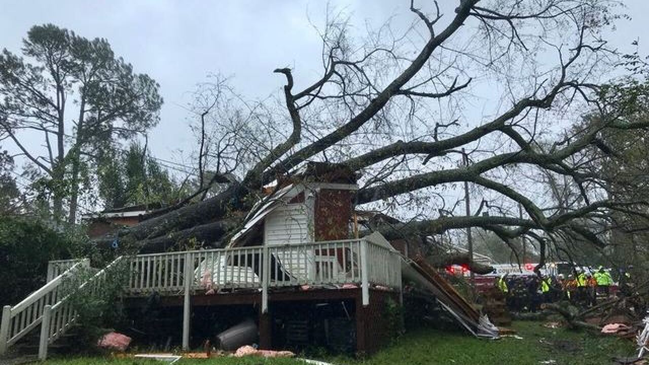 Truck driver uses school bus to save 64 dogs and cats from Hurricane Florence