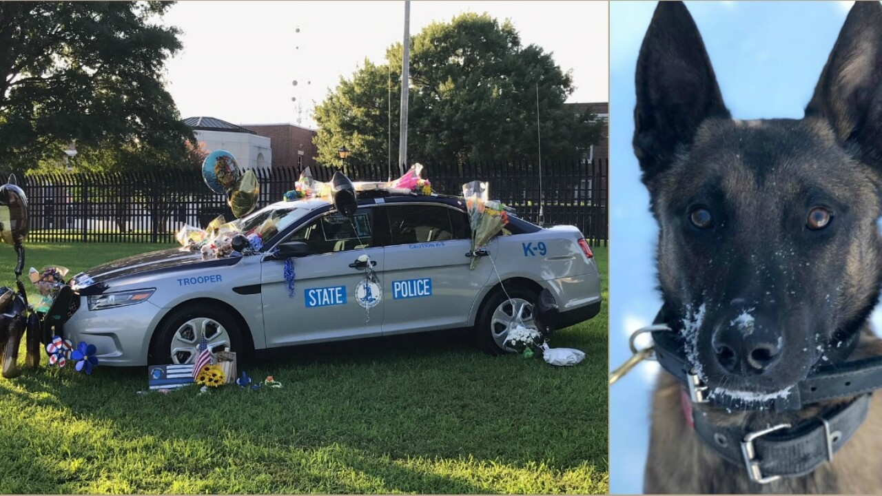 'He is watching out for me,' slain K-9's handler says