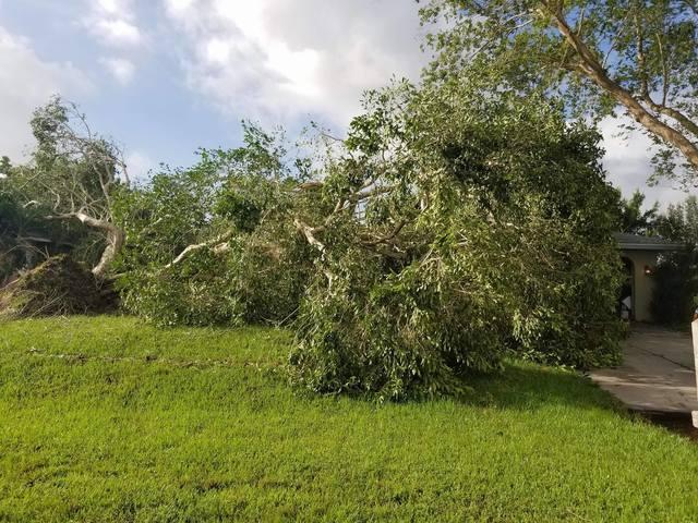Photos Storm Damage In Southwest Florida From Hurricane Irma
