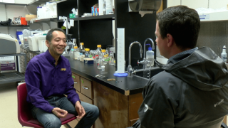 LSU researcher creates Mardi Gras bead from algae