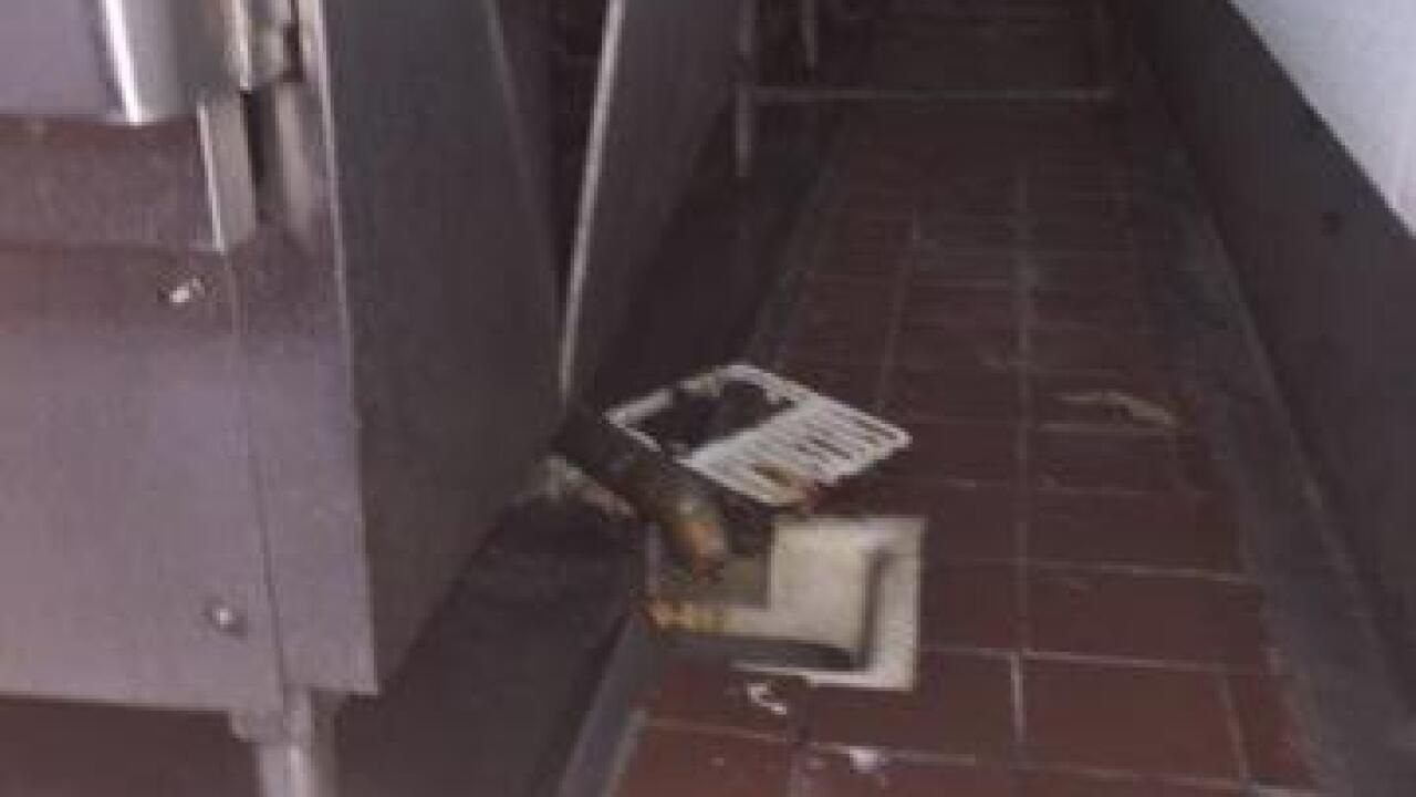 Roaches and repeat offenders on Dirty Dining