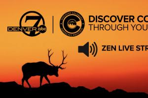 Zen Live Stream