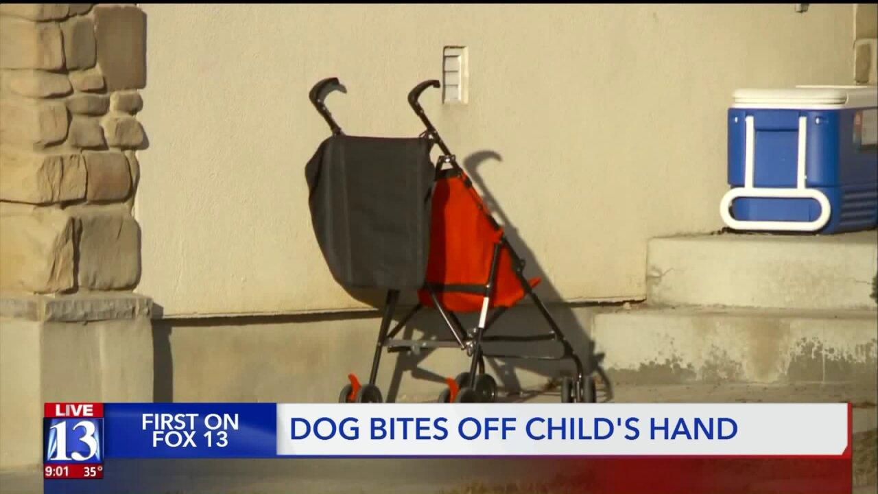 4-year-old boy loses hand to dog bite inLayton