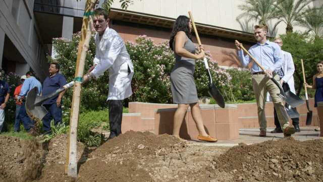 Med students plant tree in honor of body donors