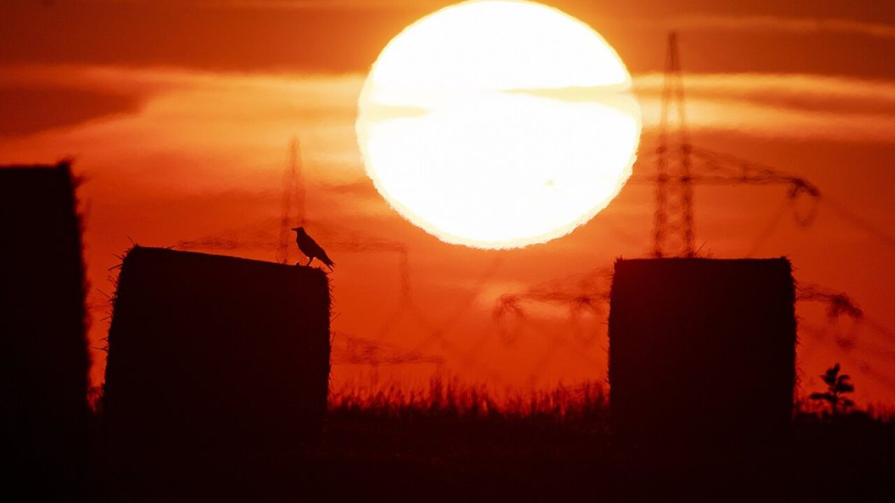 In this file photo dated Thursday, July 25, 2019, a bird sits on a straw bale on a field in Frankfurt, Germany, as the sun rises during an ongoing heatwave in Europe. The U.S. National Oceanic and Atmospheric Administration said Thursday Aug. 15, 2019, that July was the hottest month measured on Earth since records began in 1880. (AP Photo/Michael Probst, FILE)
