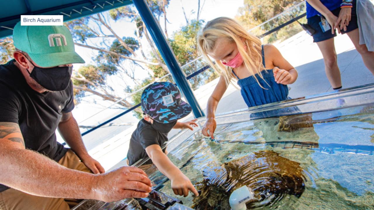Birch Aquarium reopening.png