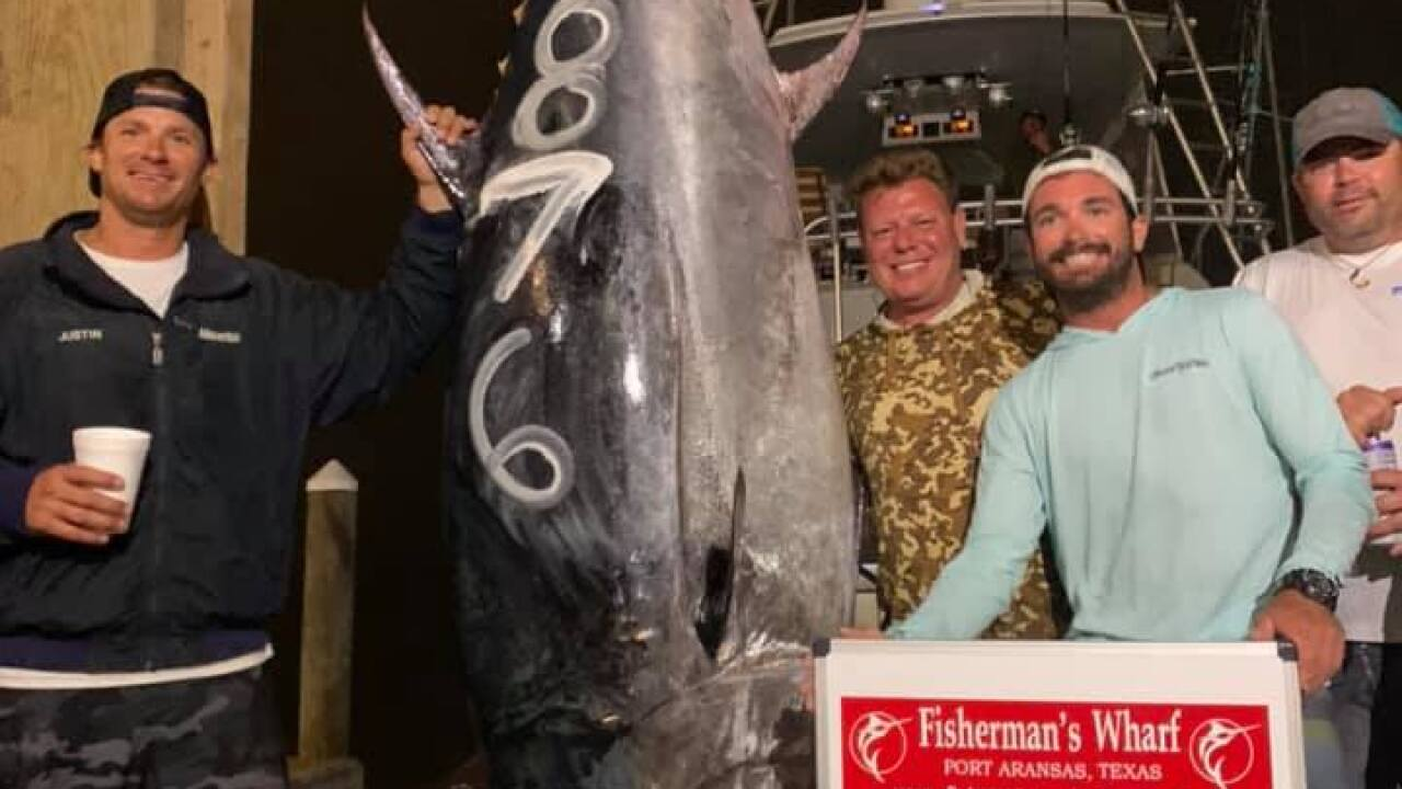 Record breaking 876 pound bluefin tuna smashes 36-year-old Texas record