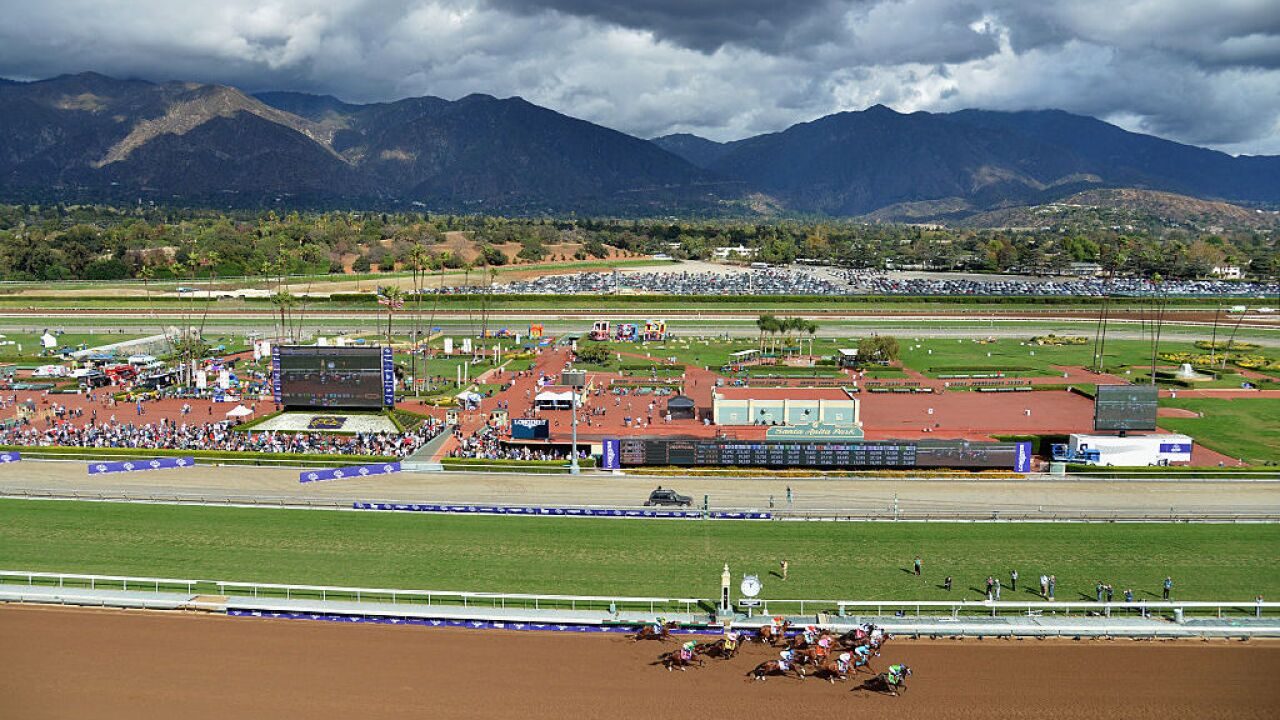 3rd horse in three days dies at Santa Anita in training