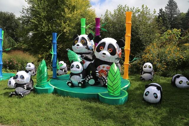"China Lights ""Panda-Mania"" takes over Boerner Botanical Gardens [PHOTOS]"