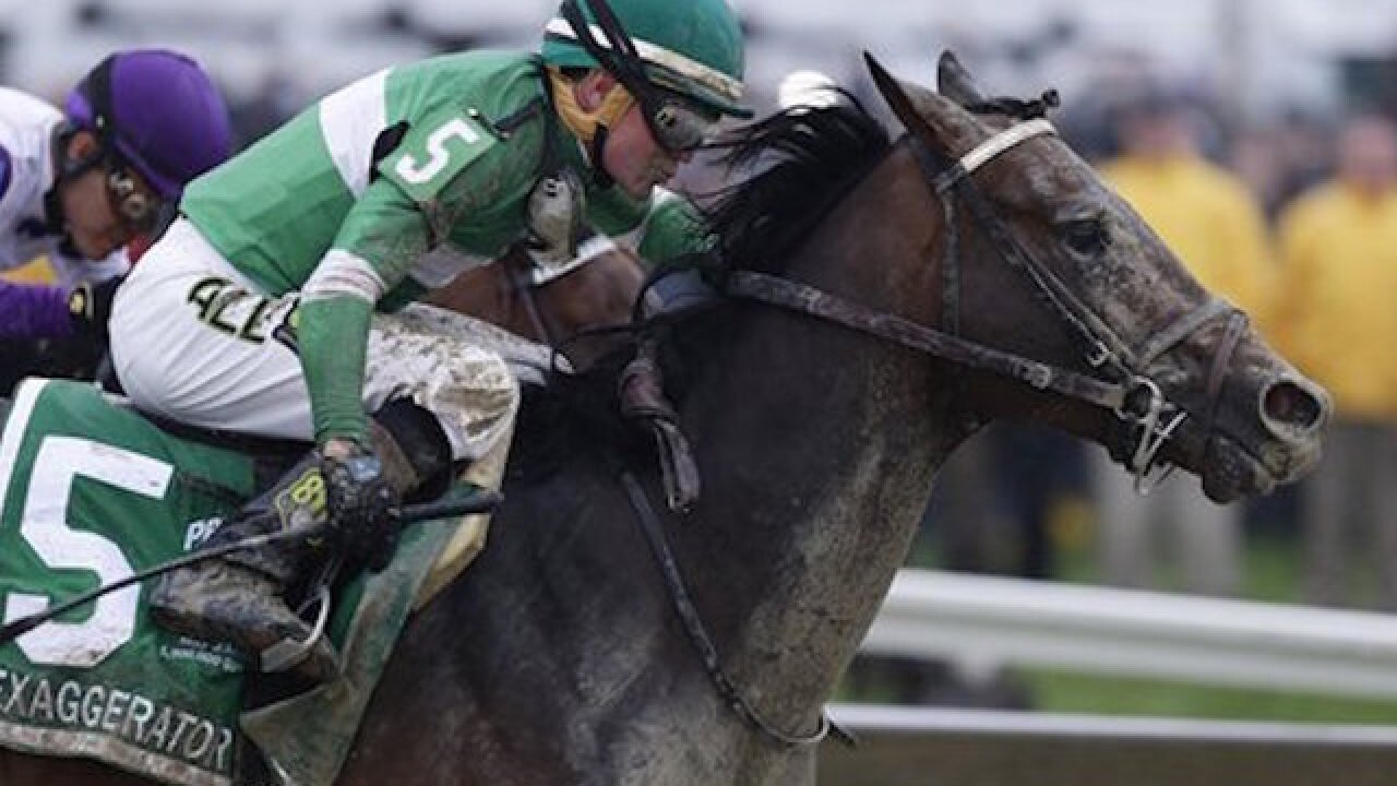 Exaggerator knocks off Nyquist in Preakness