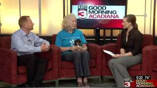 Acadiana Animal Aid to hold 'Ales for Adoptable Tails' event