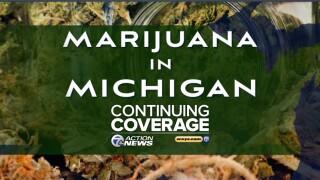 Marijuana in Michigan graphic 900x675