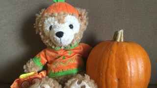 Lewis and Clark Public Health offer tips for a 'Low Risk Halloween'