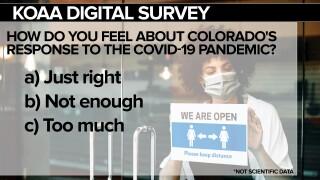 SURVEY Covid Response FSG.jpg
