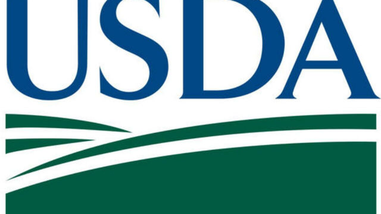 USDA confirms rare neurological disease in Florida cow