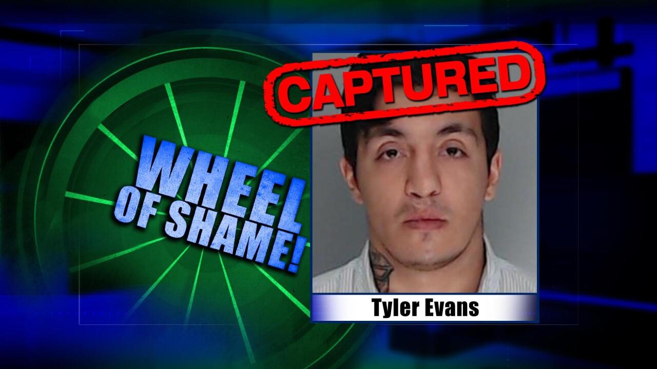 Wheel Of Shame Arrest: Tyler Evans