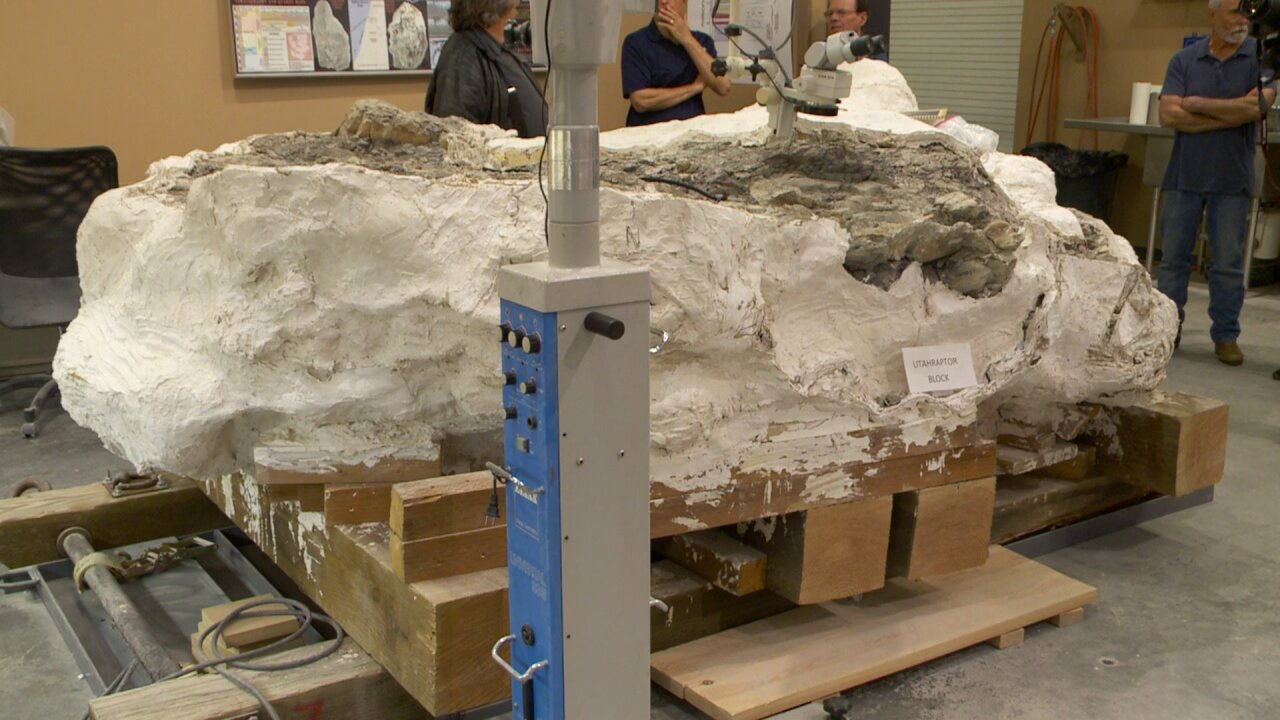 Utahraptor Project seeks donations to study 9-ton block packed withbones