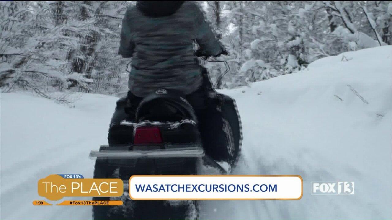 Enjoy Wasatch Mountain scenery on a snowmobileexcursion