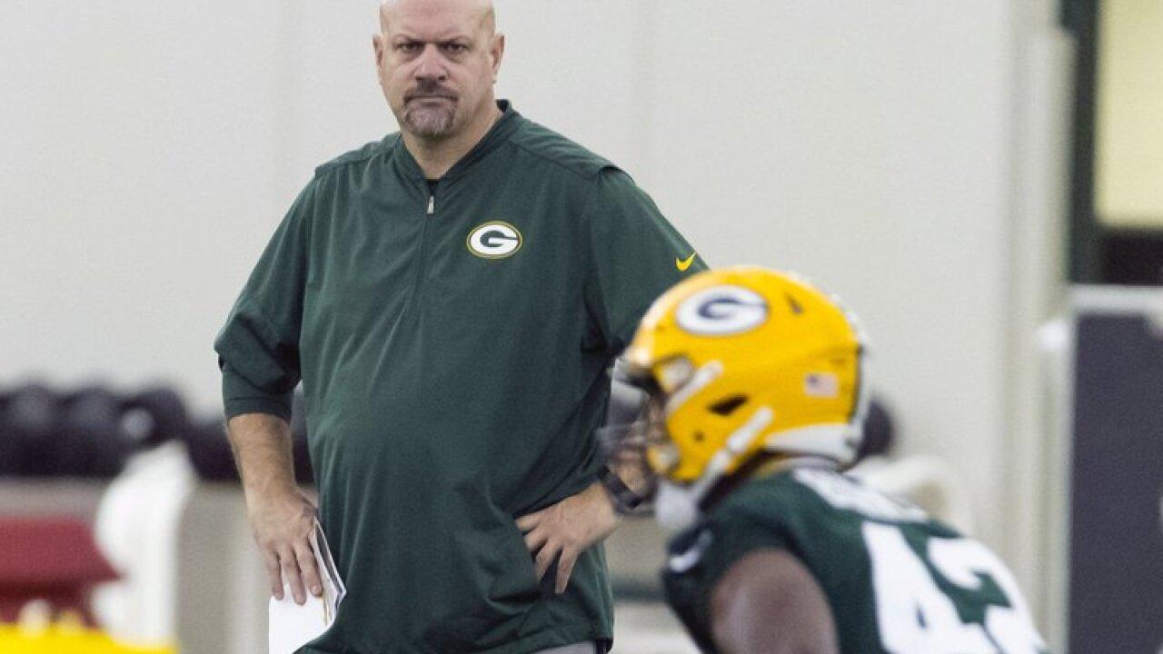 Green Bay Packers' defensive coordinator Mike Pettine