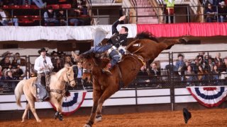 Rodeo Houston wins 5th consecutive title at Fort Worth's Rodeo X