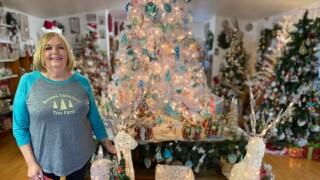 Linda Sellars from Havana Christmas Tree Farm