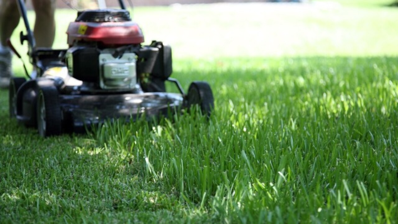 Indiana man mows 'TRUMP' into lawn after signs stolen