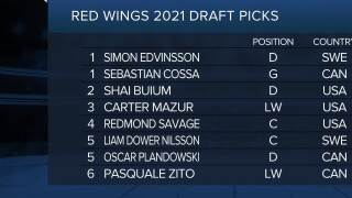 Red Wings add six players on second day of NHL Draft