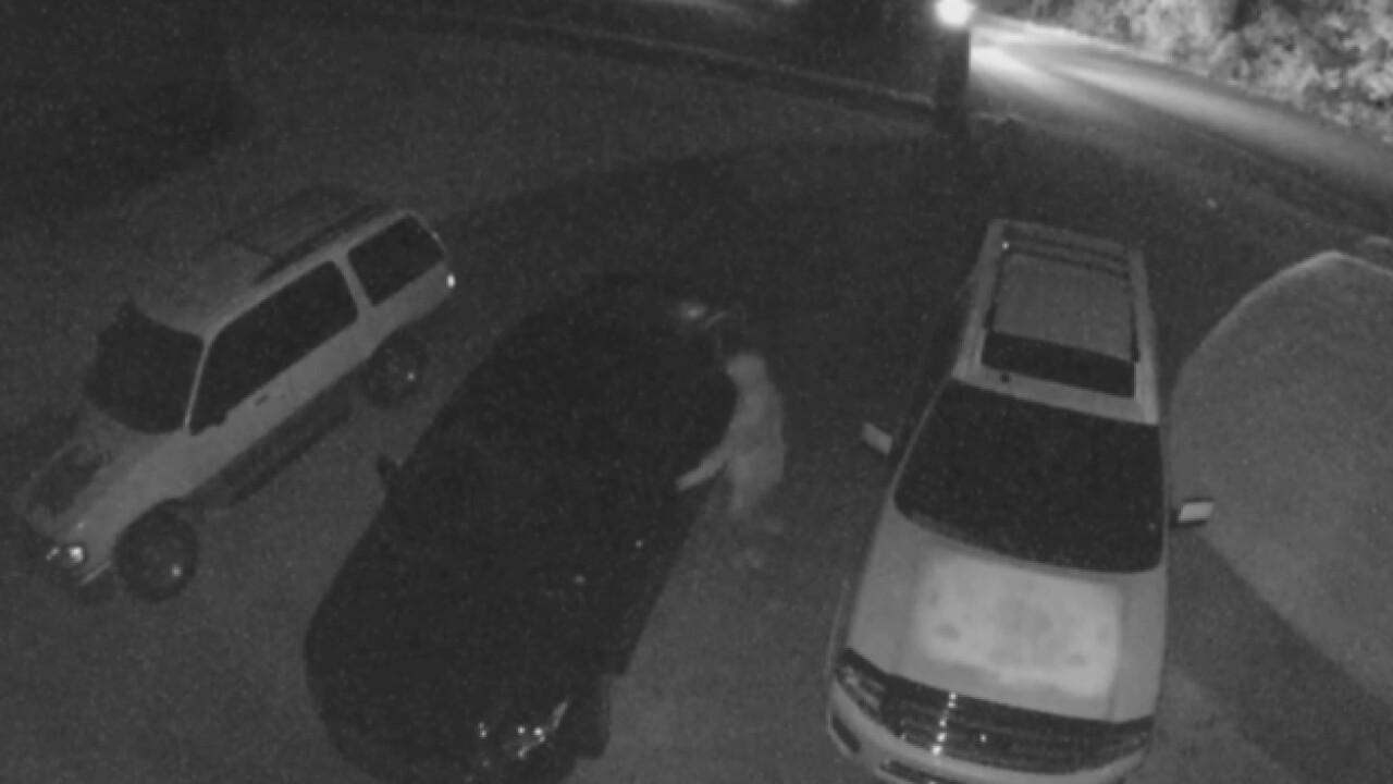 Burglars Targeting Unlocked Cars In Davidson County